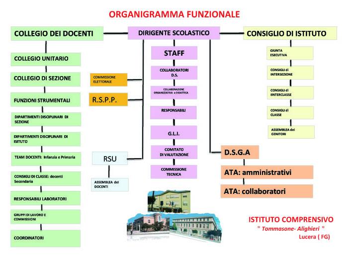organigramma 6
